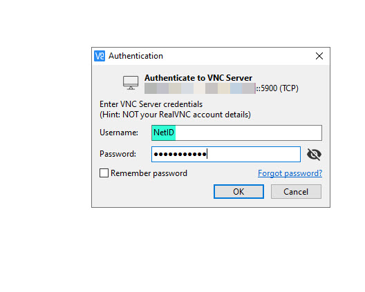 Image of VNC Viewer's authentication prompt.